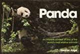 img - for Panda: An Intimate Portrait of One of the World's Most Elusive Creatures book / textbook / text book