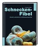 Schnecken-Fibel: Attraktiv und nützlich im Süßwasseraquarium title=