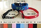 刺繍ネーム首輪(迷子札首輪) Sサイズ 名前入り 超小型犬 小型犬 猫 ブラウン