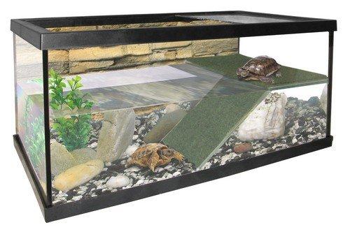 pacific-terrarium-aquarium-fur-reptilien-und-amphibien