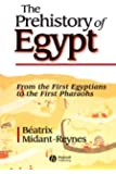 The Prehistory of Egypt: From the First Egyptians to the First Pharaohs