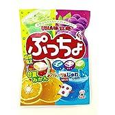 味覚糖 ぷっちょ袋アソート 100g×6袋