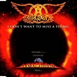 Aerosmith I Don't Want to Miss A Thing