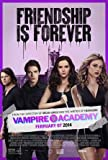 VAMPIRE ACADEMY - US MOVIE FILM WALL POSTER - 30CM X 43CM