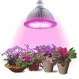 Lumin Tekco LED Pflanzenlampe, E27 12W Led Wachstumslampe...