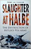 img - for Slaughter at Halbe: The Destruction of Hitler's 9th Army book / textbook / text book