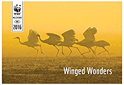 WWF-India Winged Wonders Wall Calendar