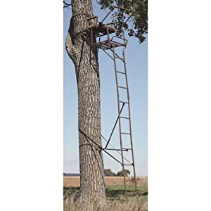 API Outdoors 20' Extreme Ladder Tree Stand