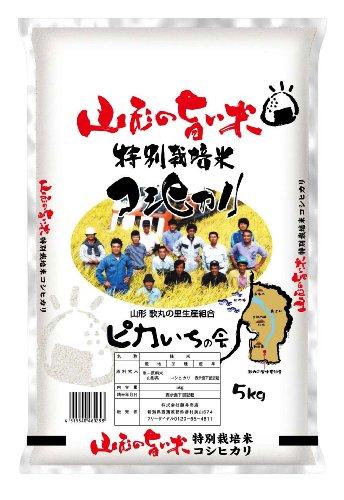 【精米】山形県産 白米 歌丸 はえぬき 5kg 平成23年度産 新米