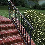 Lily's HomeTM Solar Powered 35-Foot Holiday String Lights, White LED. With Flashing and Continues On Modes 100 Picture