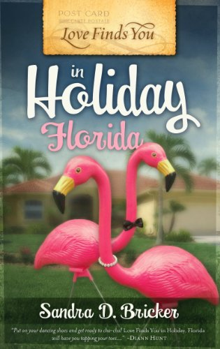 Love Finds You in Holiday, Florida, Bricker, Sandra D.