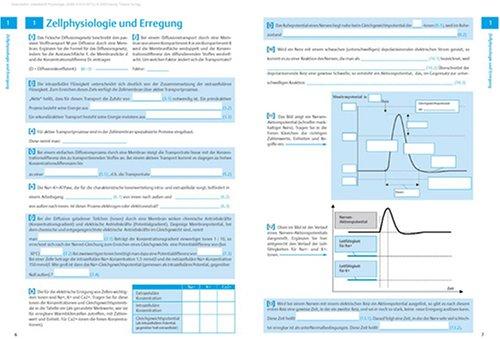 Arbeitsheft Physiologie. Prüfungswissen aktiv lernen