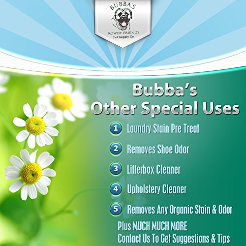 Best Stain Remover Urine Spot Odor Dog Cat Safe Carpet Cleaner Deodorizer 32 oz : eBay