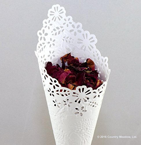 Wedding Confetti Cones with Red Rose Petals ~ Eco-Friendly ~ Gorgeous ~ As low as $4.95 each!