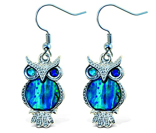 Puzzled Owl Dangle Post Fish Hook Earrings