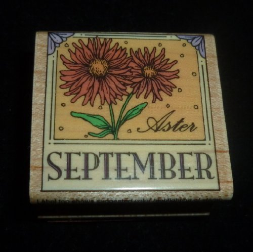 September Aster Rubber Stamp - 1