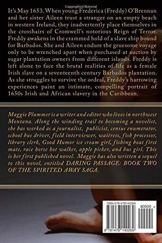 Spirited Away - A Novel of the Stolen Irish