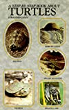 img - for Step-By-Step Book About Turtles book / textbook / text book