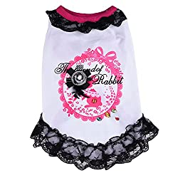 WIDEN ELECTRIC Fashion Summer Sexy Lace Skirt Puppy Pet Dog Dress Skirt Princess Dogs Clothing