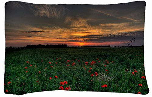 Microfiber Peach Standard Soft And Silky Decorative Pillow Case (20 * 26 Inch) - Landscapes Sunset Field Poppies Landscape front-998994