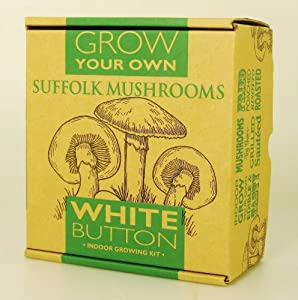 White Mushroom Small Growing Kit