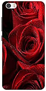 The Racoon Lean Red Rose hard plastic printed back case for Xiaomi Mi 5