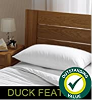 Outstanding Value Duck Feather Pillow