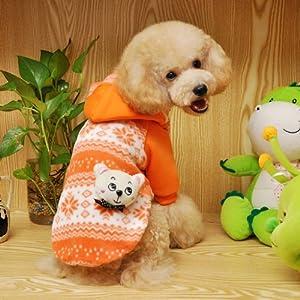 Amazon.com : Dog Winter Clothes Teddy Pomeranian Dog Coat ...