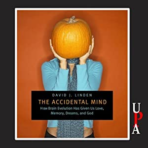 The Accidental Mind Hörbuch