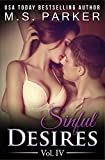 Sinful Desires Vol. 4