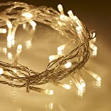 Indoor Fairy Lights, 40 Warm White LEDs on Clear Cable by Lights4funby Lights4fun - Fairy Lights