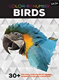 img - for Color-by-Number: Birds: 30+ fun & relaxing color-by-number projects to engage & entertain book / textbook / text book