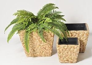 Porta piante piante porta portavasi social shopping su - Porta piante da interno ...
