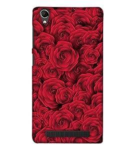 PrintHaat 3D Hard Polycarbonate Designer Back Case Cover for Intex Aqua Power Plus :: Intex Aqua Power + (bunch of beautiful red roses :: wonderful red roses :: mesmerizing red roses)