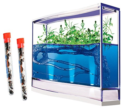 Live Giant Lighted Ecosystem Ant Habitat Shipped with 50 Live Ants Now (2 Tubes of Ants)