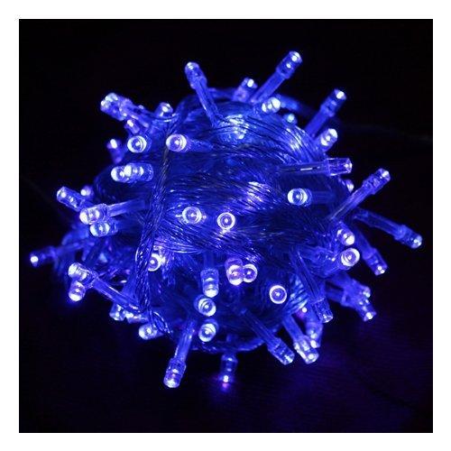 Ledspring 100 Led Light String Christmas Party Fairy Light(Blue)