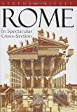 img - for Rome book / textbook / text book