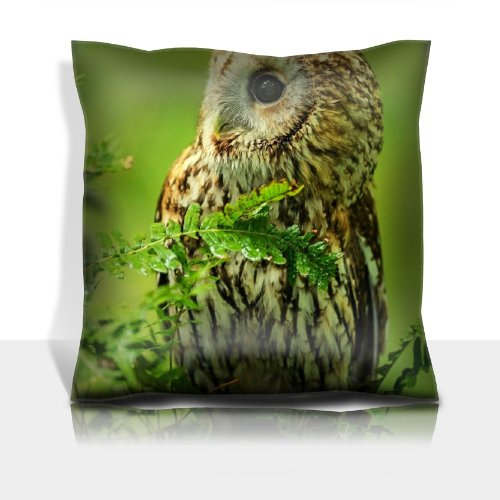 Owl Birds Predator Branches Nature Macro 100% Polyester Filled Comfort Square Pillows Customized Made To Order Support Ready Premium Deluxe 17 1/2 Inch X 17 1/2 Inch Liil Graphic Background Covers Designed Color Definition Quality Simplex Knit Fabric Soft front-906326