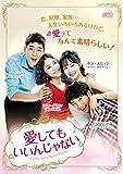 愛してもいいんじゃない DVD-BOX2(9枚組)