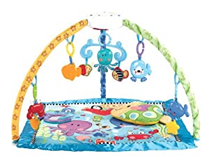 Fisher-Price Discover 'n Grow Deluxe Musical Mobile Gym
