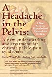 img - for A Headache in the Pelvis, a New, Revised, Expanded and Updated 6th Edition: A New Understanding and Treatment for Chronic Pelvic Pain Syndromes book / textbook / text book