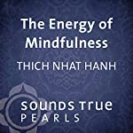 Energy of Mindfulness: Entering the Heart of Reality | Thich Nhat Hanh