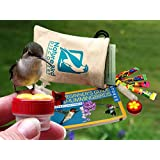 Hummingbird Hand Feeding Kit: everything you need for training wild hummingbirds to feed right from a hand held feeder (also includes mini window feeder)