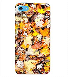 PrintDhaba Leaves D-2790 Back Case Cover for APPLE IPHONE 5C (Multi-Coloured)