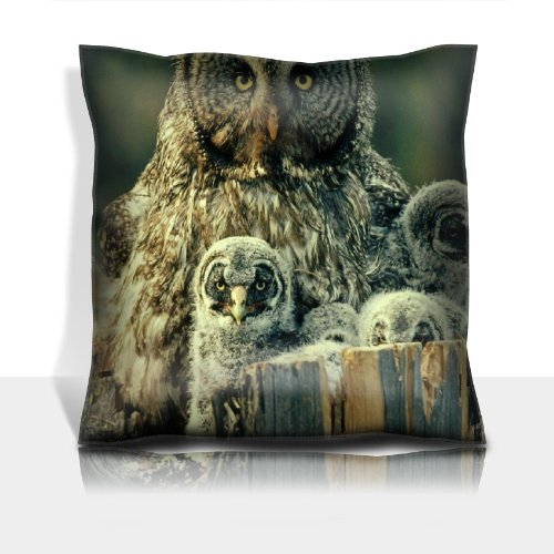 Owl Face Fur Chicks Predator 100% Polyester Filled Comfort Square Pillows Customized Made To Order Support Ready Premium Deluxe 17 1/2 Inch X 17 1/2 Inch Liil Graphic Background Covers Designed Color Definition Quality Simplex Knit Fabric Soft Wrinkle Fre front-906737