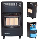 #7: Portable Gas Cabinet Heater 4.2kW