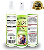 Vet Recommended - Hot Spot Treatment For Dogs - Relieves Dog Dry Skin - Antifungal Spray for Treatment - Use For Allergy Treatment. Hot Spots for Dogs By Using Our Safe Dog Anti Itch Spray (8oz/240ml)