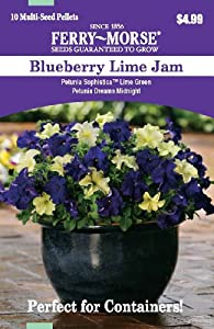 Ferry Morse 2178 Container Combinations, Petunia-Blueberry Lime Jam