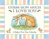 Sam McBratney Guess How Much I Love You: A Baby's First Year Calendar
