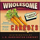 The Tile Mural Store - Wholesome Carrots by Lori Schory - Kitchen Backsplash / Bathroom wall Tile Mural